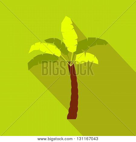 Palm tree icon in flat style on a green background