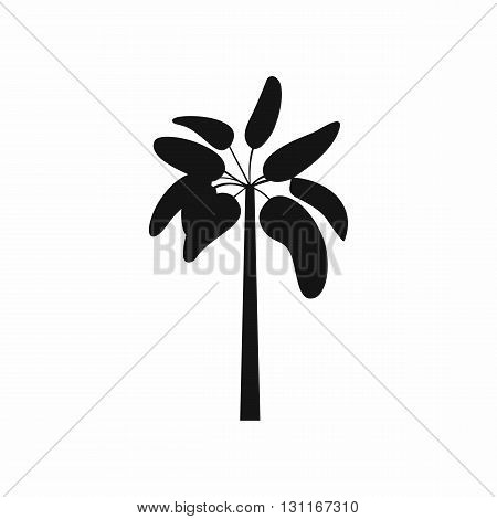 Palm icon in simple style on a white background