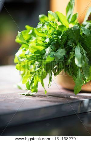 Fresh organic rucola leaves