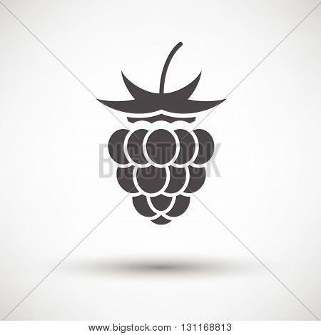Raspberry Icon On Gray Background