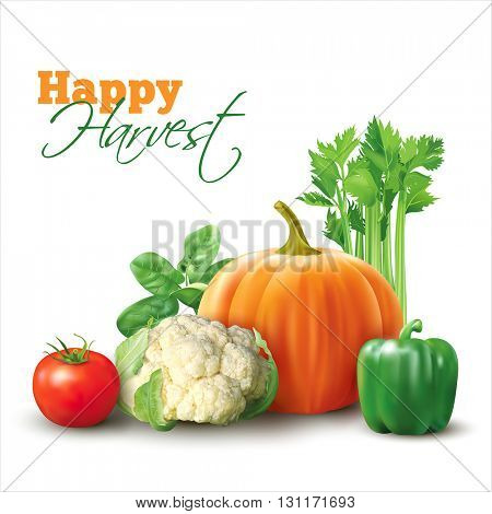 Group of vegetables on white. Vector illustration.