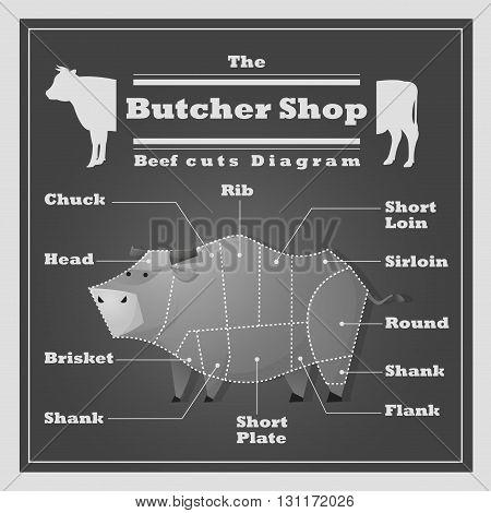 Beef cuts diagram Butcher shop background, vector, illustration