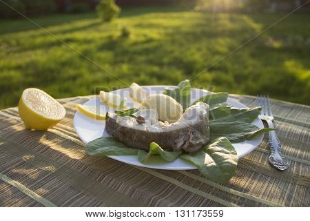 boiled cod with mashed potatoes on the leaves of sorrel