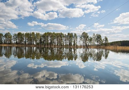 The narrow sand spit in Lake Seliger. Pine trees and clouds reflected in the calm water.