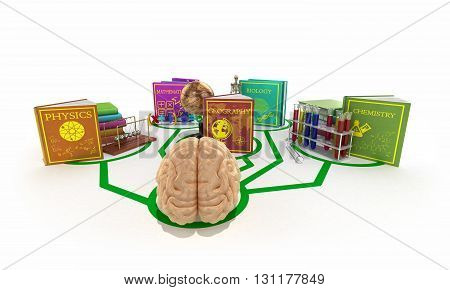 Education Concept, The Brain Is Connected To The Lines Of Books Dedicated To Different Sciences 3D R