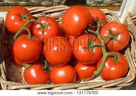 Several fresh red tomatoes in a basket