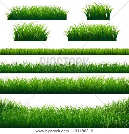 Green Grass Borders Big Set, Vector Illustration