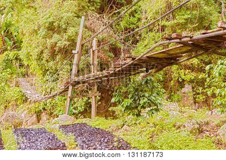 Hanging Bridges Near Boquete In Panama