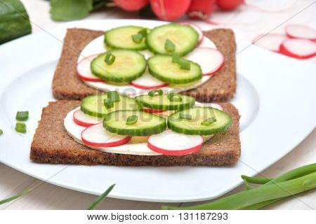 Healthy and delicious sandwiches with cottage cheese and veg