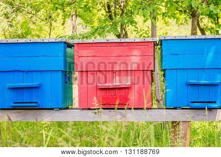 Front view of three colorful painted beehives on a small wooden platform