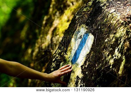 Hiking blue stripe paint marking on a rock with hiker on the trail