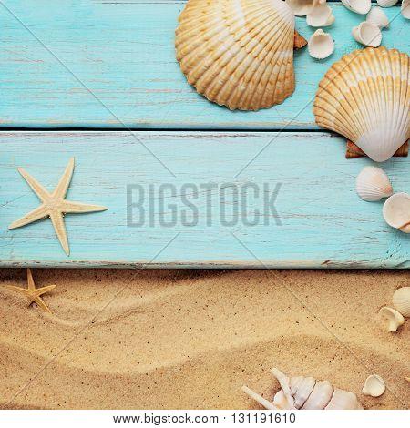 summer background. seashells border on sand