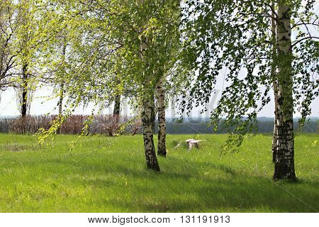 Field of