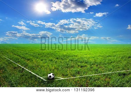 black and white soccer ball on green grass field