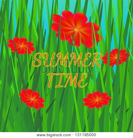Summer background with grass and flowers. Bright summer vector illustration in green and red colors.