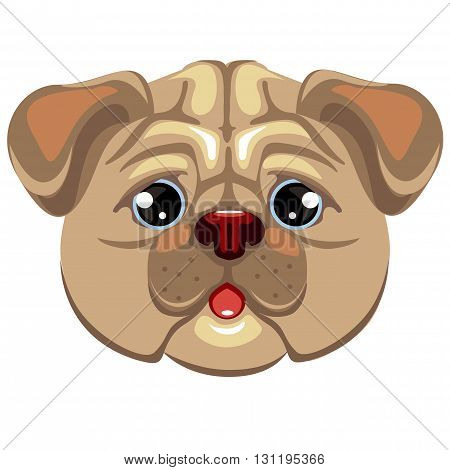 Pug puppy. Hand drawn vector illustration of dog head isolated on white.