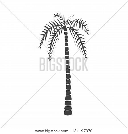 Palm tree. Palm tree vector. Palm tree eps. Palm tree icon Palm tree logo. Palm tree art. Palm tree web. Palm tree tall. Palm tree big. Palm tree ui. Palm tree flat. Palm tree isolated. Palm tree web.