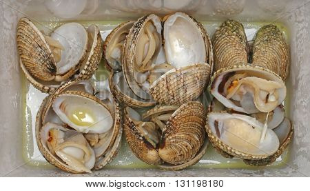 Vongole Clams Sea Food in Plastic Package