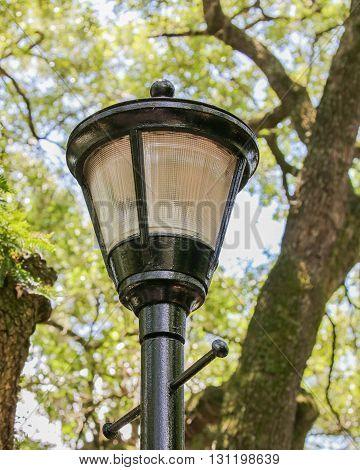 A street light on a black pole
