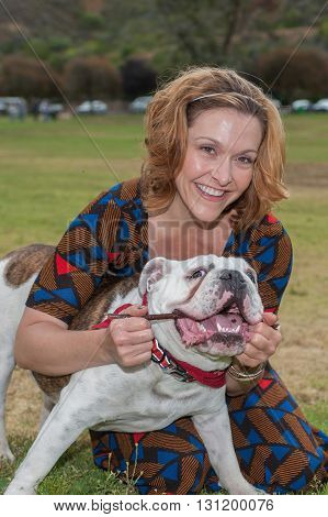 Close view of English Bulldog tugging on stick with attractive woman.