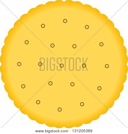 Biscuits cracker on white background. One thing