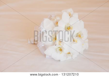 bride's bouquet wedding bouquet bride flower married