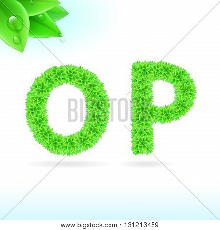 Sans serif font with green leaf decoration on white background. O and P letters