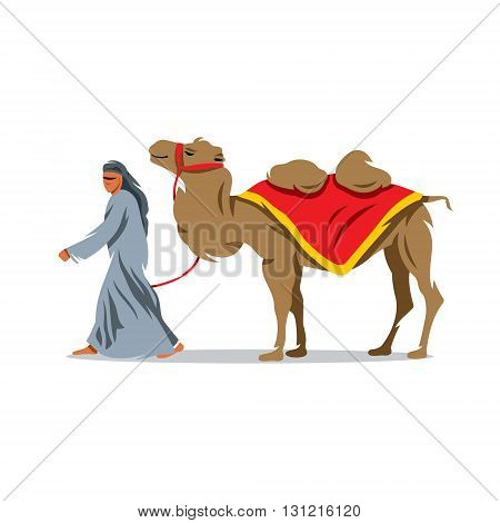 Bedouin and camel on a white background