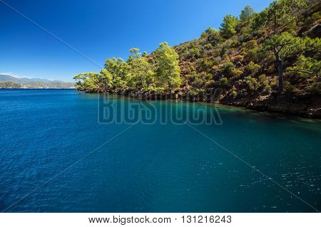 Calm bay with clear water and green trees. Skopea LImani region, Turkey