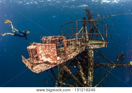 Free diver exploring the ship wreck in tropical clear sea