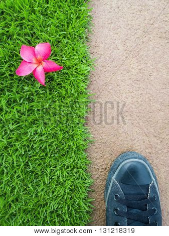 Top View of Feet on Cement Floor Between Pink Flower on Lawn Nature or Building Concept Nature or Man Made Concept Vertical