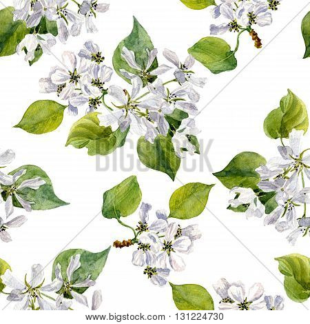 seamless pattern with watercolor apple tree flowers, ornament with apple tree blossoms, buds and leaves, hand drawn artistic background