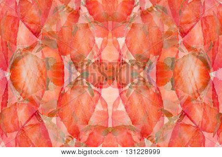 Strawberry abstract background. Pattern of slices strawberry. Strawberry background. Colorful spring background.