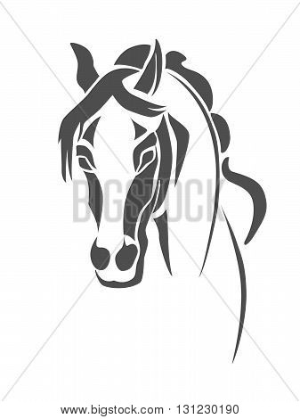 Stencil horse's head on a white background
