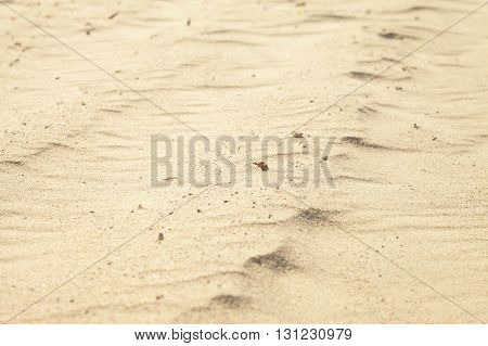 Small sand dunes on beach. Sand texture