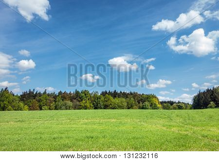 Spring Or Summer Landscape – Meadow, Forest And Sky