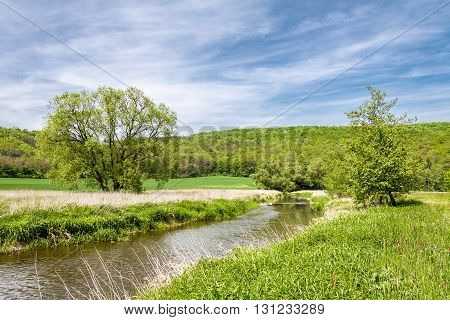 Spring Landscape With Green Meadow, River And Trees