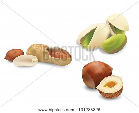Nuts for your design, eco food, useful nuts