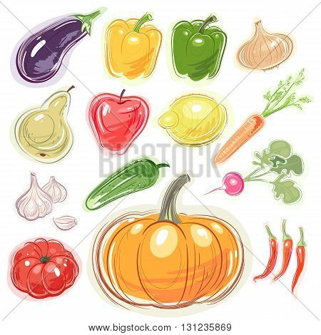 Illustration of various fruits and vegetables isolated on white background. Pumpkin eggplant pepper onion pear apple lemon carrot garlic cucumber tomato radish. Vector set.