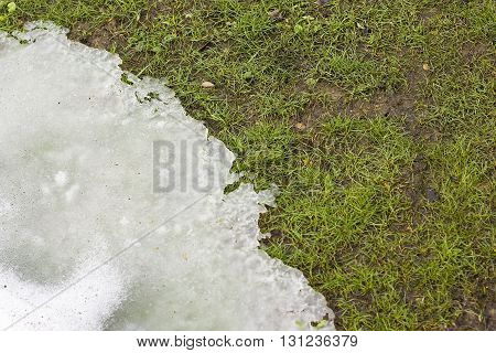 Grass and melting snow in spring background