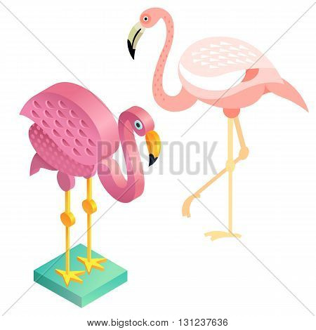 Unusual illustration of a set of birds. Vector bird flat icon flamingos and its isometric view. Two design on isolated on white background.
