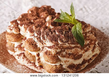 Italian Tiramisu Cake On A Plate Macro. Horizontal