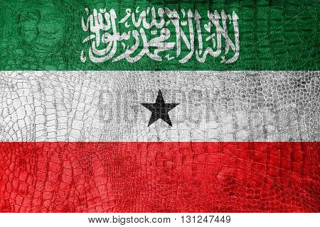 Flag Of Somaliland, On A Luxurious, Fashionable Canvas