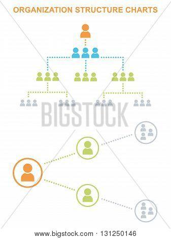 Organization_structure_5