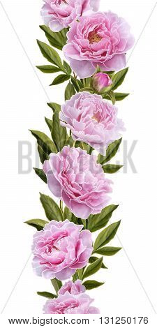 Vertical floral border. Pattern seamless. Old style  Flower garland of pink peony flowers.