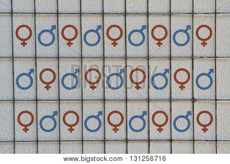 Conceptual design with the two gender symbols placed in the cells of a wire mesh
