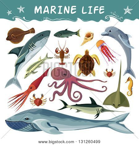 Marine inhabitants cartoon decorative icons set with dolphin shark sea turtle octopus crab squid isolated flat vector illustration