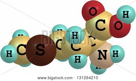 A model of a molecule of methionine an essential amino acid. Amino acids are the building blocks of proteins and have many functions in metabolism. 3d illustration