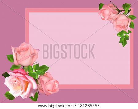 illustration with light roses in frame isolated on pink background