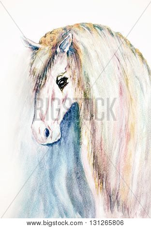 watercolor hand drawn white horse face on background